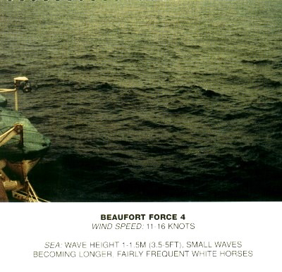 Beaufort_scale_4