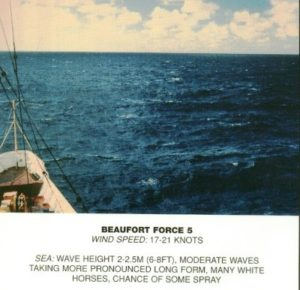 Beaufort_scale_5
