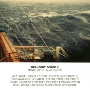 Beaufort_scale_8