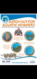 aquatic Invaders